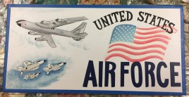 P81 - United States Air Force