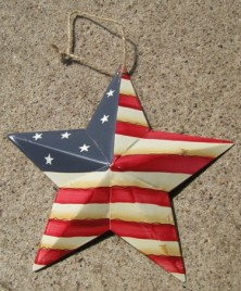 WD1348 - Patriotic Star Metal